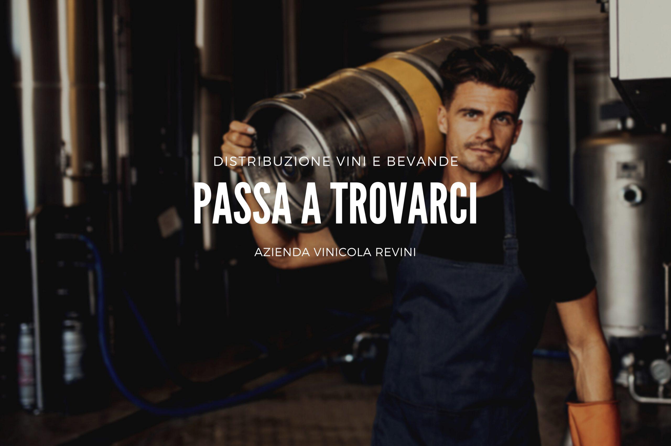 Azienda Vinicola Revini sui Colli Euganei distribuzione bevande e vini